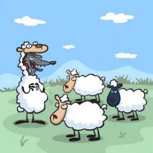 lobo-cuidando-ovejas